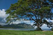 Kualoa Ridge across Kaneohe Bay, Oahu
