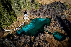 Zelenci Springs, a nature reserve near the town of Kranjska Gora, on November 11, 2020 in Kranjska Gora, Slovenia. Photo by Matic Klansek Velej / Sportida