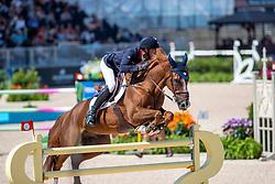 STAUT Kevin (FRA), Reveur de Hurtebise HDC<br /> Tryon - FEI World Equestrian Games™ 2018<br /> 2. Qualifikation Teamwertung 2. Runde<br /> 21. September 2018<br /> © www.sportfotos-lafrentz.de/Stefan Lafrentz