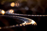 January 22-25, 2015: Rolex 24 hour. Tire barrier at sunrise