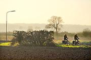 Nederland, Ooijpolder, 6-11-2020 Het gebied van de voorgenome bouw van een mega zonnepark van 180 ha. door de gemeente Berg en Dal . Het mega zonneveld moet tussen Kekerdom en Millingen aan de Rijn komen en veel inwoners vinden de plannen te ambitieus en de oppervlakte groot . De Ooijpolder is een groot gebied langs de Waal tussen Nijmegen en de Duitse grens. Delen ervan zijn door staatsbosbeheer beheerd natuurgebied waaronder de millingerwaard en het maakt deel uit van de gelderse poort . Foto: ANP/ Hollandse Hoogte/ Flip Franssen
