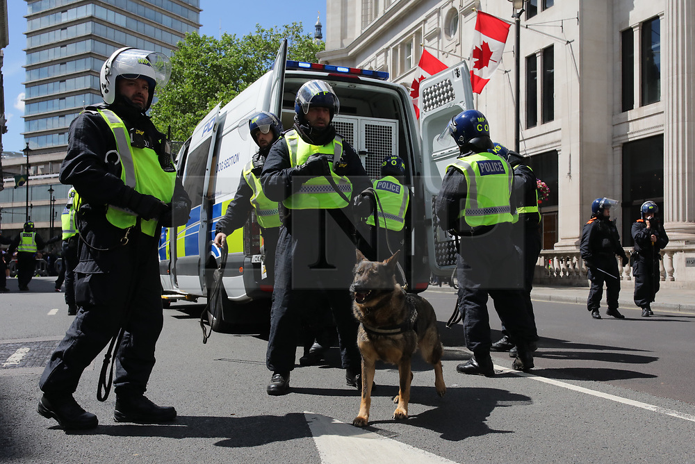 © Licensed to London News Pictures. 13/06/2020. London, UK. Police dogs arrive as Black Lives Matter and right-wing protesters clash in Trafalgar Square. Protests have taken place across the United States and in cities around the world in response to the killing of George Floyd by police officers in Minneapolis on 25 May. Photo credit: Rob Pinney/LNP