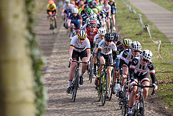Mieke Kröger is caught as Sunweb push the pace at Ronde van Drenthe 2017. A 152 km road race on March 11th 2017, starting and finishing in Hoogeveen, Netherlands. (Photo by Sean Robinson/Velofocus)