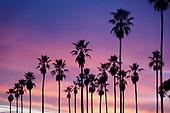 News-Los Angeles-Dec 7, 2020