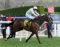 National Hunt Horse Racing - 2019 Cheltenham Festival - Thursday, Day Three (St Patrick's Day)<br /> <br /> P Townend on Min runs for the line after the last fence,  in the 14.50 Ryan Air Steeple Chase (Grade 1, Class 1), at Cheltenham Racecourse.<br /> <br /> COLORSPORT/ANDREW COWIE