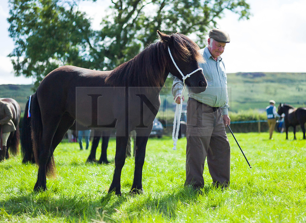 © Licensed to London News Pictures.12/08/15<br /> Danby, UK. <br /> <br /> A man stands with his horse in a paddock during the 155th Danby Agricultural Show in the Esk Valley in North Yorkshire. <br /> <br /> The popular agricultural show attracts competitors and visitors from all over the surrounding area to this annual showcase of country life. <br /> <br /> Photo credit : Ian Forsyth/LNP