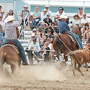 2015 Rodeos