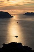 Ship sailing in golden ocean with low cloud cover in the background | Skip som seiler i gyllent hav, med lavt skydekke i bakgrunnen.