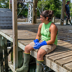 """Ashley Conrad, crew on the """"Hunter James"""" on the wharf at Potts Harbor Lobster in Harpswell, Maine."""