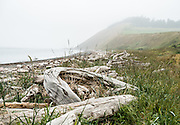 Start from a driftwood-strewn beach at Ebey's Landing State Park and walk to the Bluff Trail, in Ebey's Landing National Historical Reserve, on Whidbey Island, Washington, USA. Ebey's Landing is on the Strait of Juan de Fuca, at the gateway to Puget Sound.  In 1850, Isaac Neth Ebey (Whidbey Island's first permanent Euro-American settler) homesteaded the adjacent low prairie which has easy access to upper reaches of the island. Ebey's Landing became a popular boat launch, supported by the historic Ferry House (built in 1860), where early travelers could get lodging, food, postal services, supplies, and overland transportation to the Island County seat across the island (at Penn Cove).