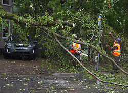 Workers remove a fallen tree blocking a road in Dartmouth, N.S. as hurricane Dorian approaches on Saturday, September 7, 2019, Canada. Photo by Andrew Vaughan/CP/ABACAPRESS.COM