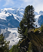 "The Morteratsch Glacier flows from the Bernina massif (4049 meters or 13,284 feet elevation) near Pontresina, in Upper Engadine, Switzerland, the Alps, Europe. The Swiss valley of Engadine translates as the garden of the En (or Inn) River (Engadin in German, Engiadina in Romansh, Engadina in Italian). Published full page in July 2014 issue of ""MERIDIANI MONTAGNE: Engadina Estate"" magazine by Editoriale Domus S.p.A. Milan, Italy; and in Ryder-Walker Alpine Adventures ""Inn to Inn Alpine Hiking Adventures"" Catalog 2006."