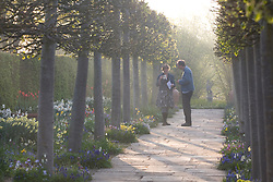 Adam Nicolson and Sarah Raven, the spring walk, Sissinghurst