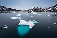 Late summer icebergs drift in water of Kong Oscars Havn, Tasiilaq, Greenland
