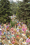Hundreds of hillside graves decorated with flowers and wreaths for the Day of the Dead festival November 3, 2017 in Nuevo San Juan Parangaricutiro, Michoacan, Mexico.