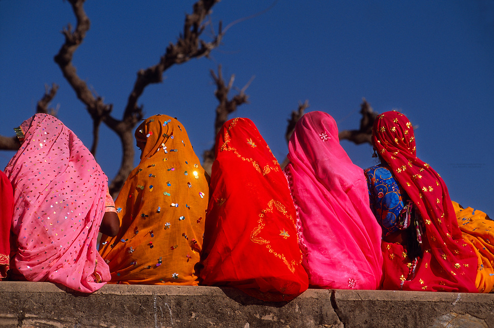 Rajasthani women wearing multi colored saris, Pushkar Camel Fair, Pushkar, Rajasthan, India