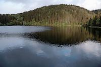 Estenstaddammen i kveldslys, Estenstadmarka i Trondheim
