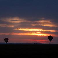 Africa, Kenya, Masai Mara. Hot Air Balloons at Sunrise in the Maasai Mara.