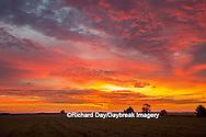 63893-02912 Sunrise at Prairie Ridge State Natural Area, Marion Co, IL