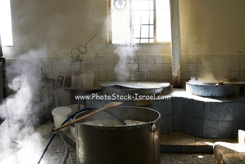 Albania, Benca steaming vats in a small cottage industry cheese factory
