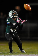 Midview High School at Elyria Catholic High School varsity football on October 18, 2013. Images © David Richard and may not be copied, posted, published or printed without permission.