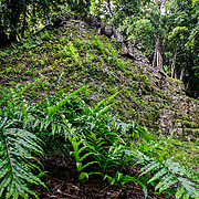 The jungle grows over one of the partially restored buildings in the Tikal Maya ruins in northern Guatemala, now enclosed in the Tikal National Park.