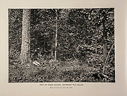 """SPOT ON WHICH GENERAL McPHERSON WAS KILLED, Near Atlanta, Ga., July 22, 1864from The American Civil War book and Grant album : """"art immortelles"""" : a portfolio of half-tone reproductions from rare and costly photographs designed to perpetuate the memory of General Ulysses S. Grant, depicting scenes and incidents in connection with the Civil War Published  in Boston and New York by W. H. Allen in 1894"""