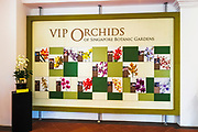 Display at the National Orchid Garden, Singapore, Republic of Singapore