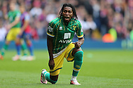 Dieumerci Mbokani of Norwich City shouting at the assistant referee. Barclays Premier League match, Crystal Palace v Norwich city at Selhurst Park in London on Saturday 9th April 2016. pic by John Patrick Fletcher, Andrew Orchard sports photography.