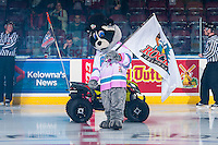 KELOWNA, CANADA - OCTOBER 21: Rocky Raccoon, the mascot of the Kelowna Rockets stands on the ice on October 21, 2016 at Prospera Place in Kelowna, British Columbia, Canada.  (Photo by Marissa Baecker/Shoot the Breeze)  *** Local Caption ***