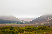 Elfin Forest, Baywood Park, Los Osos, San Luis Obispo County, California, USA