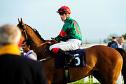 Mr Nice Guy ridden by Poppy Bridgwater and trained by Sylvester Kirk in the Kingstone Press Wild Berry Handicap (Class 6)  race.  - Ryan Hiscott/JMP - 17/08/2019 - PR - Bath Racecourse - Bath, England - Race Meeting at Bath Racecourse