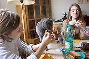(MODEL RELEASED IMAGE). Delphine Le Moine, a dance student at the Centre International de Danse Jazz Rick Odums, shares lunch at home with her sister Laetitia, a high school student, and her cat in the family dining room in the Paris suburb of Montreuil, France. (Supporting image from the project Hungry Planet: What the World Eats.)