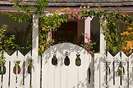 A white pickett fence with pineapple shaped cutouts in front of a traditional cottage;  Dunmore Town, Harbour Island, The Bahamas