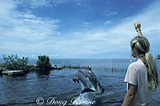 bottlenose dolphins, Tursiops truncatus, jump for trainer, Dolphin Research Center, Grassy Key, Florida Keys, USA ( Gulf of Mexico )