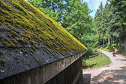 hiking trail along Schluchtsee at Schluhuwanapark, Grafenhausen, State Park , black forest, Germany