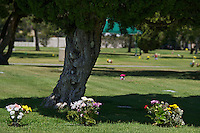 Flowers mark graves in a cemetery.