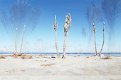 Salton Sea now and then