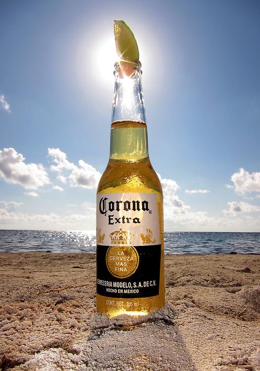 Corona, sunning on the beach.