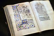 Nederland, Maastricht, 16-3-2016 Tefaf, The European Fine Art Fair in het MECC. Dit is de grootste kunstbeurs in Europa en ter wereld. 29e editie. Onder de topstukken bevindt zich een vroeg werk van Rembrandt van Rijn, uit de serie zintuigen is het de Reuk, geur.Op de foto: een van de duurste objecten is een manuscript van de Gebroeders Van Limburg uit circa 1407, met dertig tekeningen en tientallen miljoenen euros vraagprijs.Foto: Flip Franssen