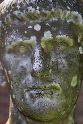magnificent statue of a moss covered face