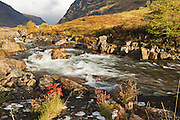 River Coe, near to the Clachaig Inn, while lit by the evening sun, with a rowan tree sapling growing from the rocks in the foreground.