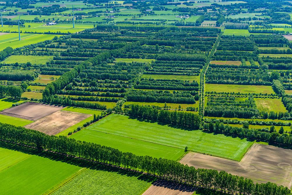 Nederland, Gelderland, Gemeente Aalten, 29-05-2019; Landgoed Wolboom, buitengebied (in de driehoek Varsseveld, Lichtenvoorde, Aalten). Aangelegd om in de toekomst als landgoed ontwikkeld te worden (met landhuis of villa op eigen kavel).<br /> Wolboom Estate, local area (in the Varsseveld, Lichtenvoorde, Aalten triangle). Built to be developed as an estate in the future.<br /> <br /> luchtfoto (toeslag op standard tarieven);<br /> aerial photo (additional fee required);<br /> copyright foto/photo Siebe Swart