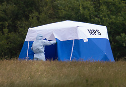 © Licensed to London News Pictures. 08/06/2020. London, UK. A police forensics officer enters an evidence tent at Fryent Country Park near Wembley, north London. According to reports, two women were found unresponsive and were pronounced dead at the scene yesterday. Photo credit: Peter Macdiarmid/LNP