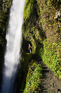 A young man, holds onto a safety cable and looks in wonder at the cold waters of beautiful Tunnel Falls on Eagle Creek trail in the Columbia River Gorge, Oregon, USA. Tunnel Falls received its name due to a tunnel being cut from the bedrock behind the falls so that hikers and trail runners can pass further up the gorge.  The trail becomes very narrow during this section and it is necessary to hold onto a safety cable. (Model Released)
