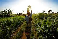 Manjeri, 55, walks to her farm north of Gulu, Uganda.