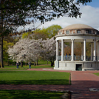 USA, Massachusetts, Boston. Boston Commons in springtime.