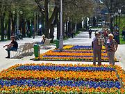 Krynica Zdrój, rabaty ułożone z kwiatów na Deptaku.