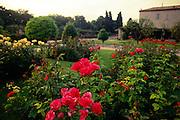 France, Provence, Nice, Gardens at the Cimiez Monastery