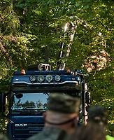 31.08.2017 Puszcza Bialowieska Kilkunastu aktywistow organizacji ekologicznych z 12 krajow zablokowalo wywiezienie scietego drewna z Puszczy Bialowieskiej . Po 3 godzinach blokowania TIRa z drewnem i przepychankach ze Straza Lesna blokada zakonczyla sie sukcesem , czyli rozladowaniem TIRa w lesie N/z ciezarowka rozladowuje drewno na uzgodnione z lesnikami miejsce fot Michal Kosc / AGENCJA WSCHOD